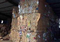 废纸回收09